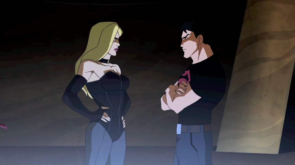 black canary young justice Quotes