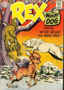 Rex_the_Wonder_Dog_38