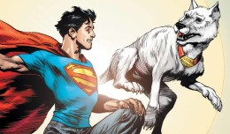 Krypto header